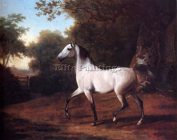 SWISS AGASSE JACQUES LAURENT A GREY ARAB STALLION IN A WOODED LANDSCAPE PAINTING