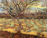 VAN GOGH APRICOT TREES IN BLOSSOM2 ARTIST PAINTING REPRODUCTION HANDMADE OIL ART