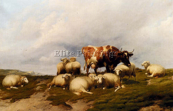 THOMAS SIDNEY COOPER A COW AND SHEEP ON THE CLIFFS ARTIST PAINTING REPRODUCTION