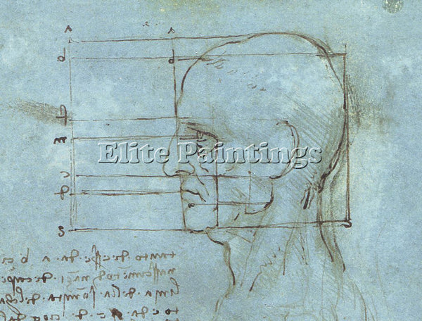 LEONARDO DA VINCI DESSIN BLUE HEAD ARTIST PAINTING REPRODUCTION HANDMADE OIL ART