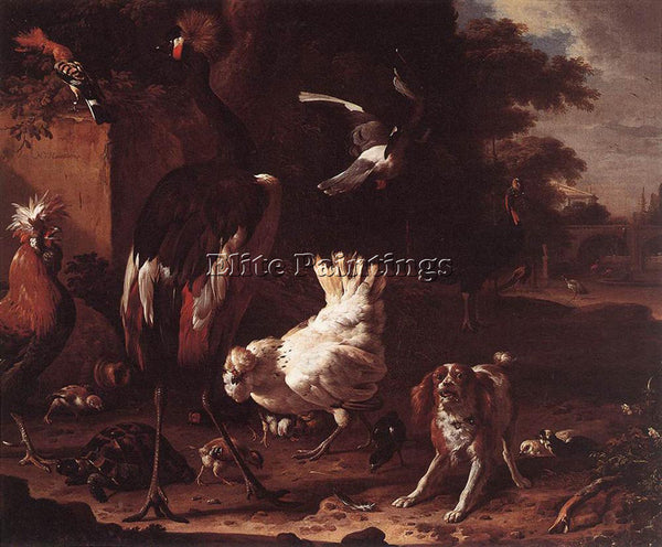 MELCHIOR DE HONDECOETER D BIRDS AND A SPANIEL IN A GARDEN ARTIST PAINTING CANVAS