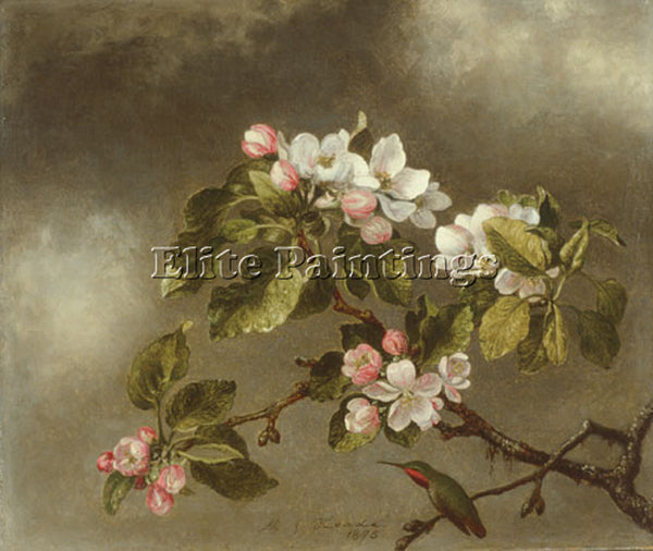 MARTIN JOHNSON HEADE HUMMINGBIRD AND APPLE BLOSSOMS ARTIST PAINTING REPRODUCTION