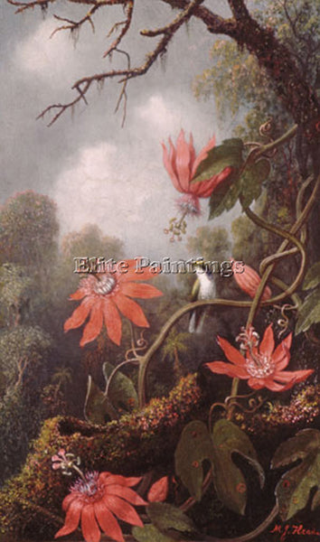 MARTIN JOHNSON HEADE HUMMINGBIRD AND PASSIONFLOWERS ARTIST PAINTING REPRODUCTION