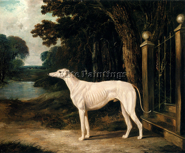 JOHN FREDERICK HERRING VANDEAU A WHITE GREYHOUND ARTIST PAINTING HANDMADE CANVAS