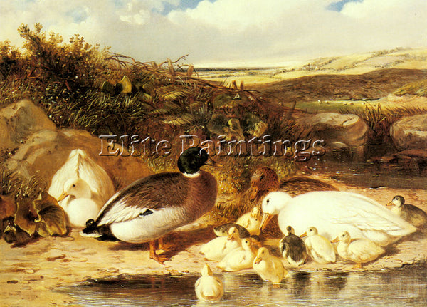 JOHN FREDERICK HERRING MALLARD DUCKS AND DUCKLINGS ON A RIVER PAINTING HANDMADE