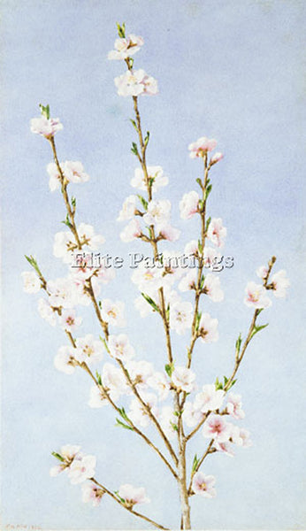 JOHN WILLIAM HILL PEACH BLOSSOMS ARTIST PAINTING REPRODUCTION HANDMADE OIL REPRO