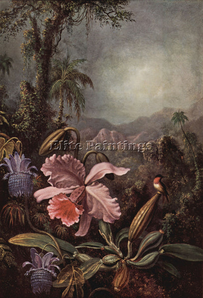 HUDSON RIVER ORCHIDS PASSION FLOWERS AND HUMMINGBIRDS BY MARTIN JOHNSON HEADE
