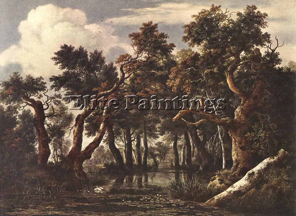 JACOB VAN RUISDAEL THE MARSH IN A FOREST ARTIST PAINTING REPRODUCTION HANDMADE