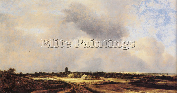 JACOB VAN RUISDAEL RUISDAEL 47NAARDEN ARTIST PAINTING REPRODUCTION HANDMADE OIL