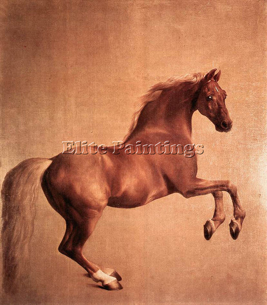 STUBBS GEORGE WHISTLEJACKET ARTIST PAINTING REPRODUCTION HANDMADE OIL CANVAS ART