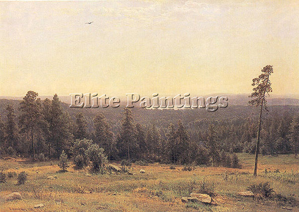 IVAN SHISHKIN THE FOREST HORIZONS 1884 ARTIST PAINTING REPRODUCTION HANDMADE OIL