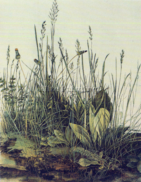 DURER THE LARGE PIECE OF GRASS ARTIST PAINTING REPRODUCTION HANDMADE OIL CANVAS