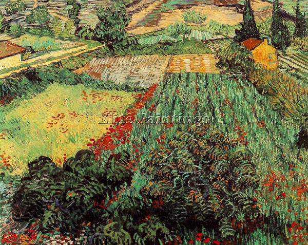 VAN GOGH FIELD WITH POPPIES ARTIST PAINTING REPRODUCTION HANDMADE OIL CANVAS ART