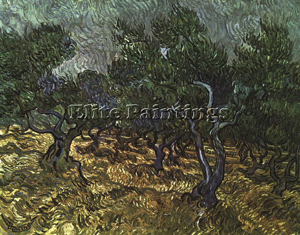 VINCENT VAN GOGH THE OLIVE GROVE 1889 ARTIST PAINTING REPRODUCTION HANDMADE OIL