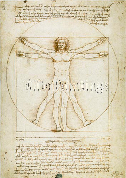 FAMOUS PAINTINGS VITRUVIAN MAN ARTIST PAINTING REPRODUCTION HANDMADE OIL CANVAS