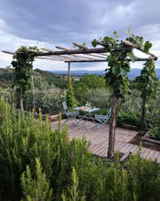Load image into Gallery viewer, Lunch Under The Tuscan (and Umbrian) Sun hosted by Giovanna, featuring native chef Sabrina and local guide Stefania
