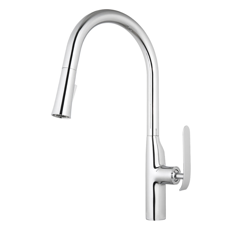 Aquamoon Dylan Single-Handle Kitchen Sink Faucet With Pull Down Sprayer, Chrome Finished