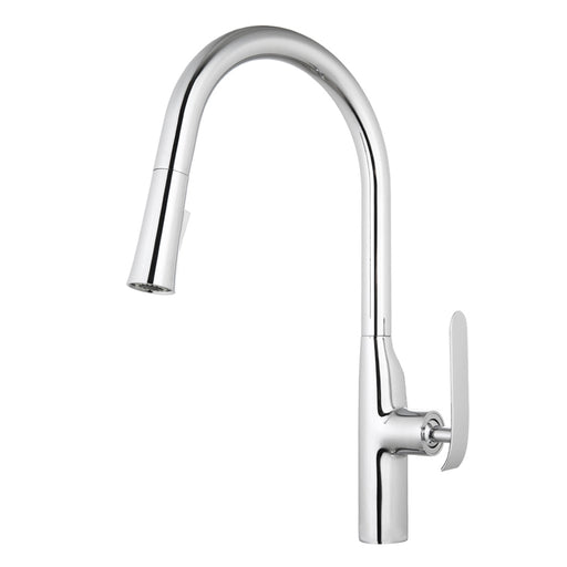 Aquamoon Dylan Single-Handle Kitchen Sink Faucet With Pull Down Sprayer, Brushed Nickel Finished