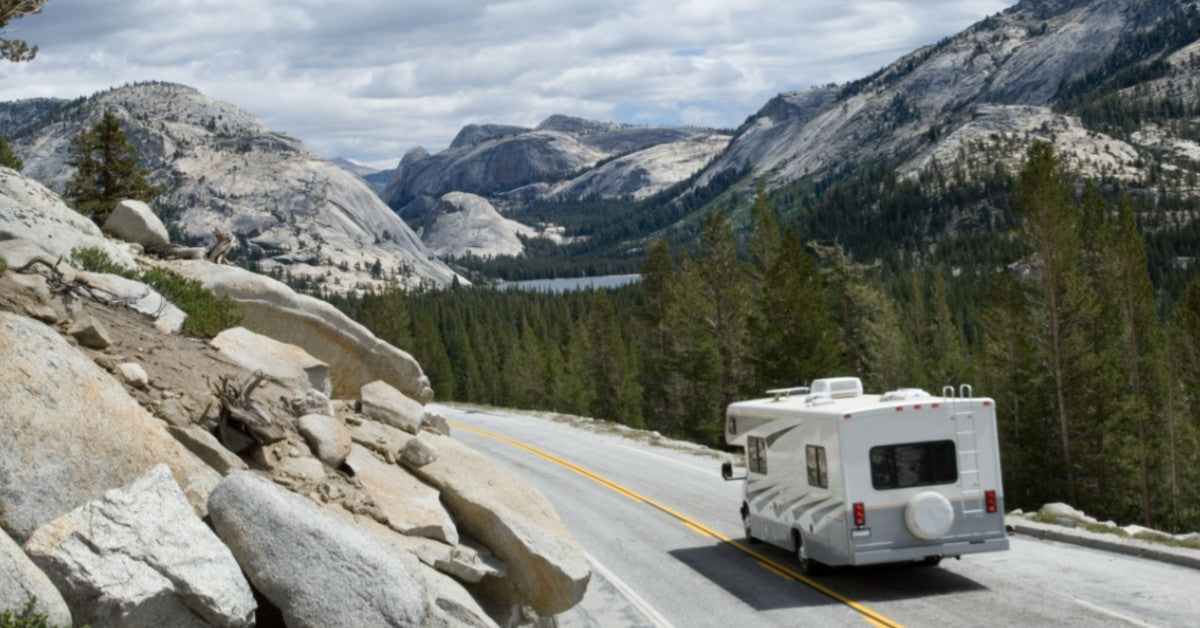 Pest Management And Your Recreational Vehicle