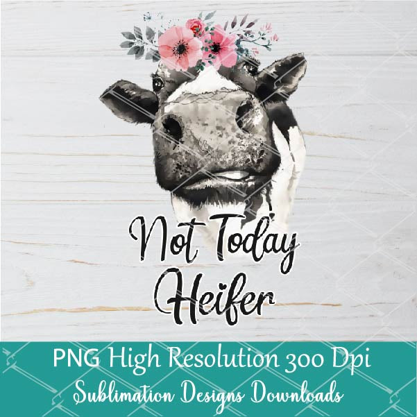 Not Today Heifer PNG sublimation downloads - Cow PNG Sublimation Designs