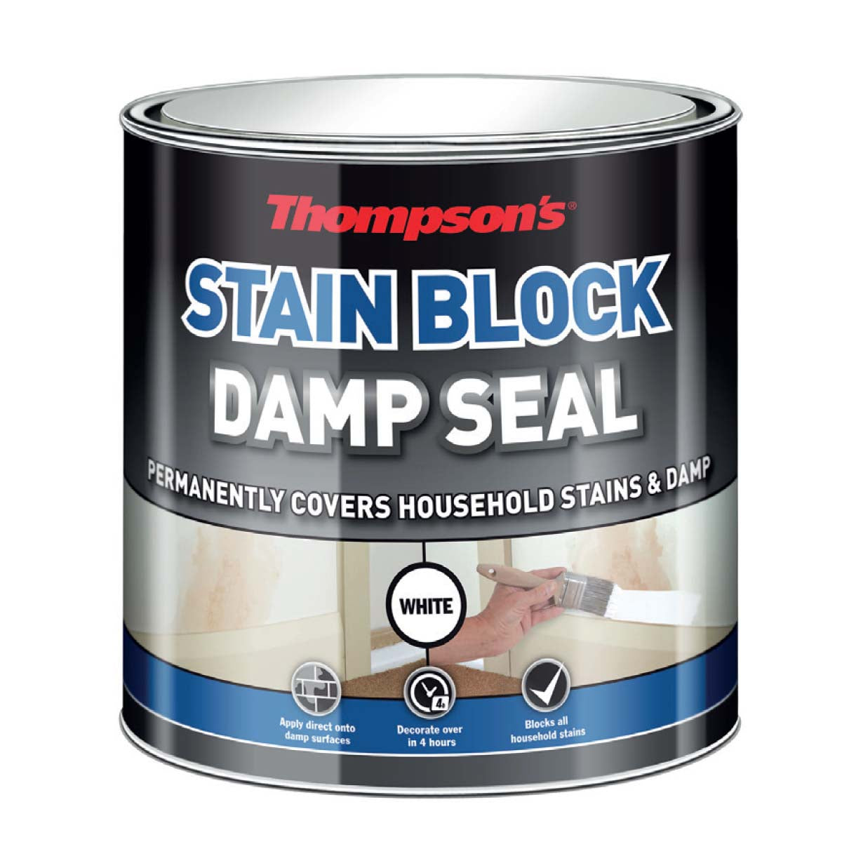 Thompson's Damp Seal White 250ml (30853)
