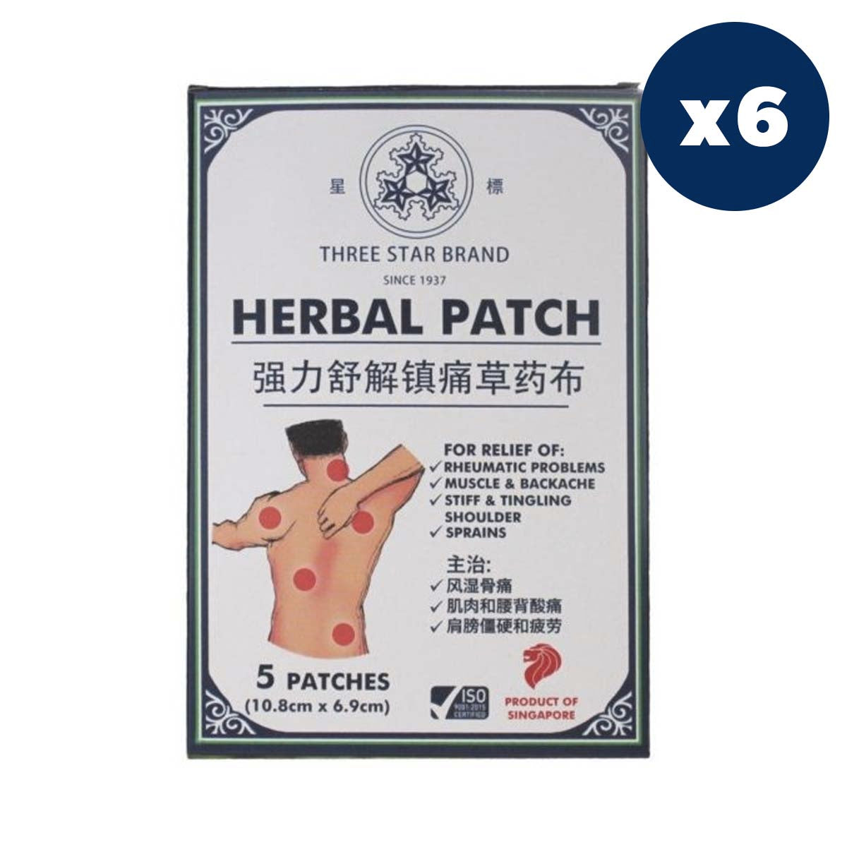 TSB Herbal Medicated Patch (5 patches) x 6