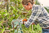 A woman using the STIHL GTA 26 Hand Held pruner to saw through branches
