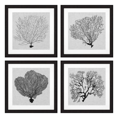 Eichholtz Set of 4 Sea Fans Shadow Prints