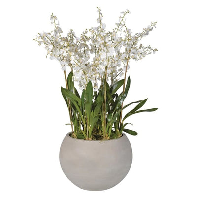 Large Stone Effect Pot of Orchids