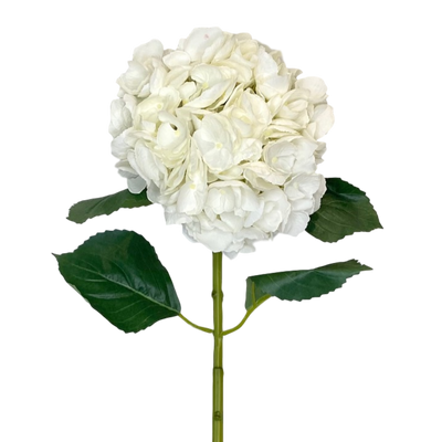 Large White Luxe Hydrangea
