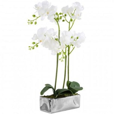 White Orchid in Silver Finish Pot