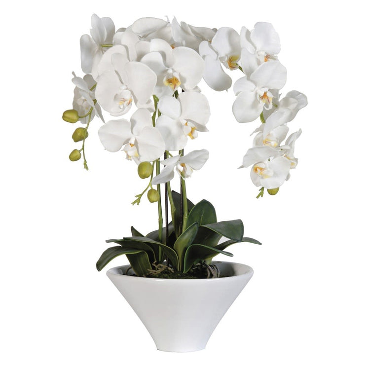 Artificial Orchid in White Pot