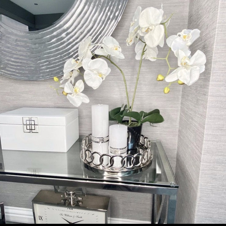 Small White Orchid in Black Pot