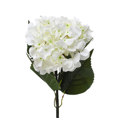 Extra Large Cream Large Hydrangea Flower