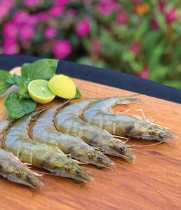 HAWAII DELIVERY - Kauai Shrimp 10lbs