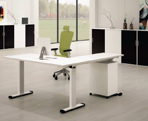 Stand Up Adjustable Executive (White)