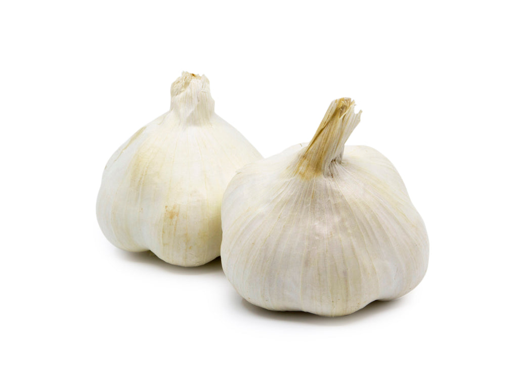 Garlic White