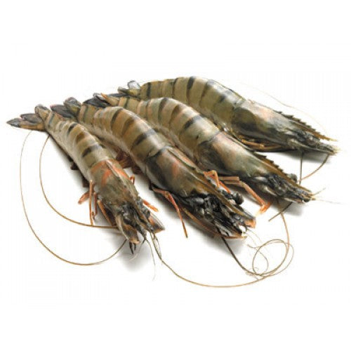 King Prawns Whole U8