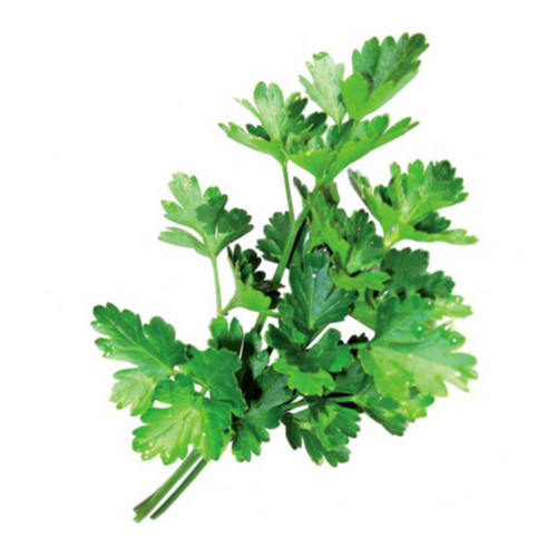 Parsley Unwashed