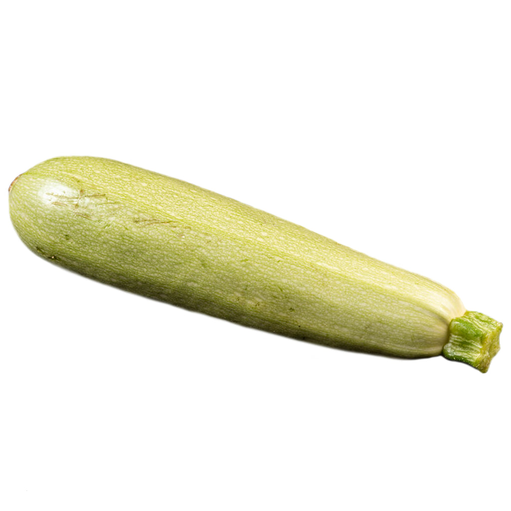 Zucchini Light Green