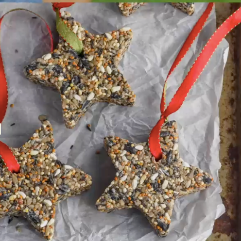 Make Your Own Bird Seed Ornaments - Friday 5/8 at 2:30 EST