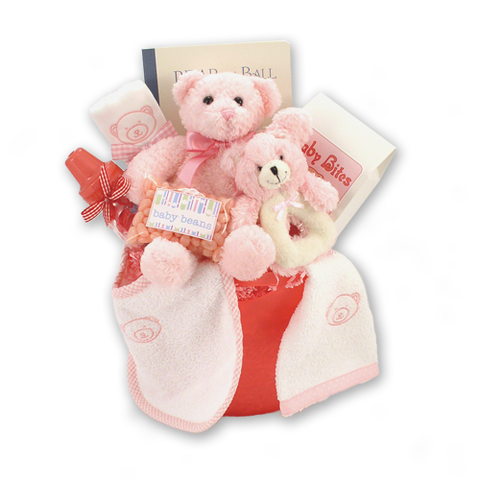 Bear Necessities - Baby Girl Gift Basket