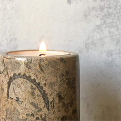Fossil stone candle holder with a fern wallpaper background