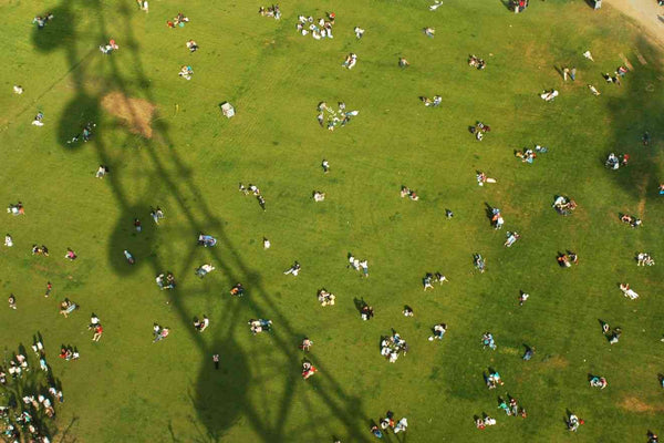 People sitting on grass in the shadow of the London Eye