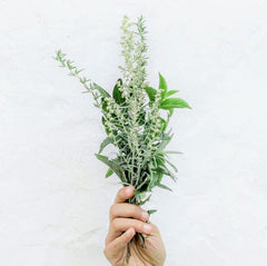 Woman holding a sprig of wild flowers