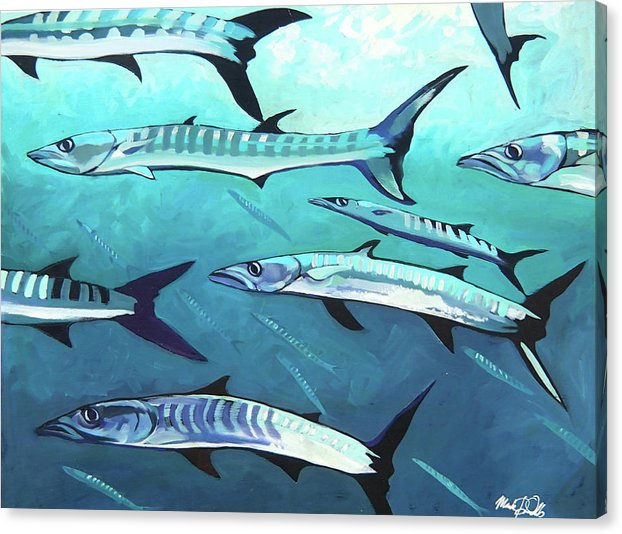 Barracuda - Canvas Print