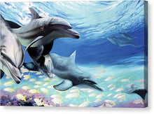 Load image into Gallery viewer, Blue Dolphins - Canvas Print