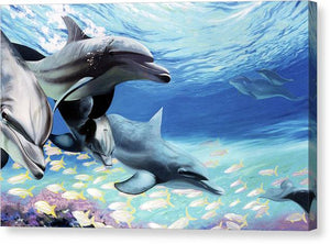 Blue Dolphins - Canvas Print