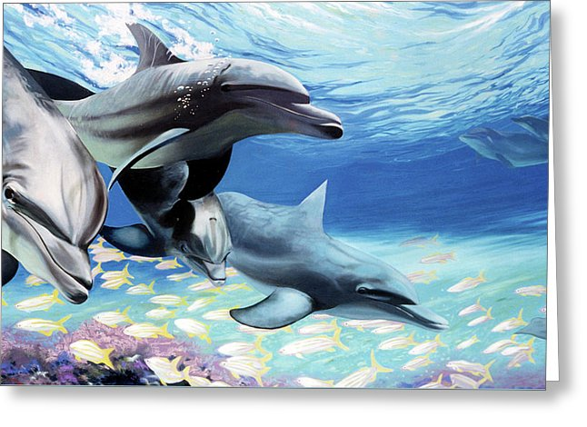 Blue Dolphins - Greeting Card