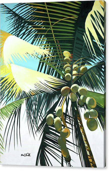 Sunny Palm - Canvas Print